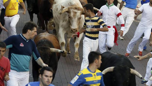 Imagen del primer encierro de San Sebastián de los Reyes (Madrid).
