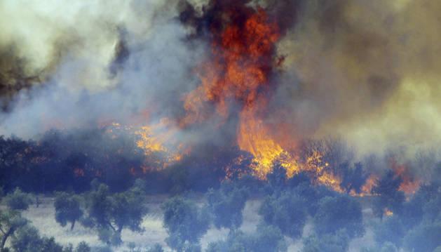 El incendio de Piedrabuena (Ciudad Real), uno de los cuatro que siguen activos.