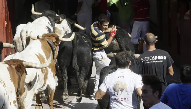 El cuarto encierro de San Sebastián de los Reyes ha concluido con seis heridos leves que están siendo evaluados en los hospitales de campaña.