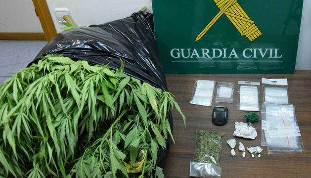 El arrestado tenía una plantación de marihuana en el jardín de la parte trasera de su vivienda.