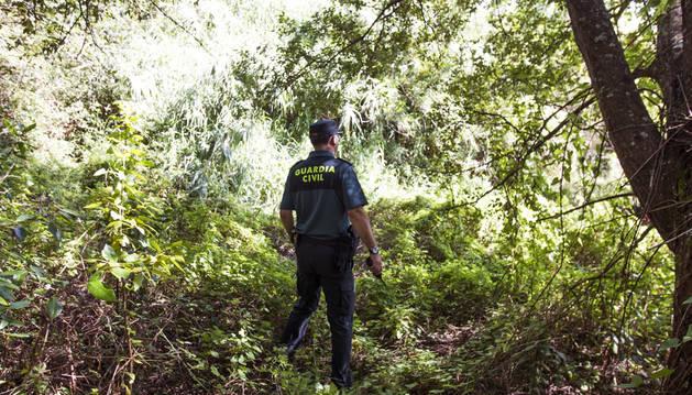 Un agente de la Guardia Civil peina la zona próxima al domicilio de Diana Maria Quer.