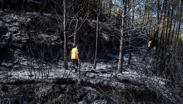El incendio calcinó unas 10 hectáreas de terreno, en su mayoría bosque de pino, en término de Javier. Las labores de remate y refresco continuaron a lo largo del día de ayer.