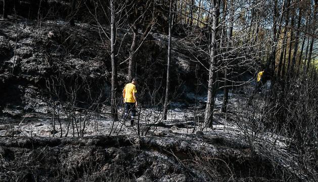 Efectivos de bomberos, en la zona del incendio declarado este lunes.