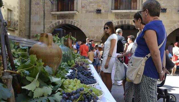 La plaza del ayuntamiento de Cirauqui se convirtió ayer en una muestra que ofreció al visitante una veintena de variedades de uva.
