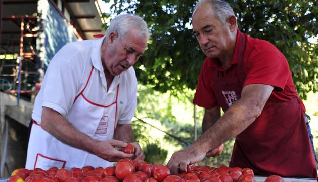 Seleccionar el mejor tomate, clave para un buen resultado. Por la izda: Emilio  Íñigo Gurrea y José Luis Osés Moreno.