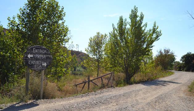 En San Adrián, la actuación se desarrollará entre el puente del Ega y parte de la orilla, el soto, que conduce hacia la presa.