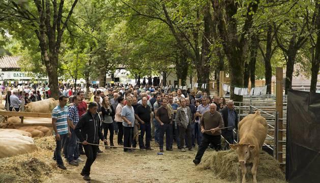 Imágenes de la feria de ganado pirenaico en Elizondo