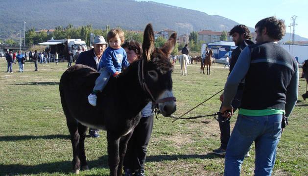 Imagen de una edición anterior de la feria de ganado equino de San Miguel.