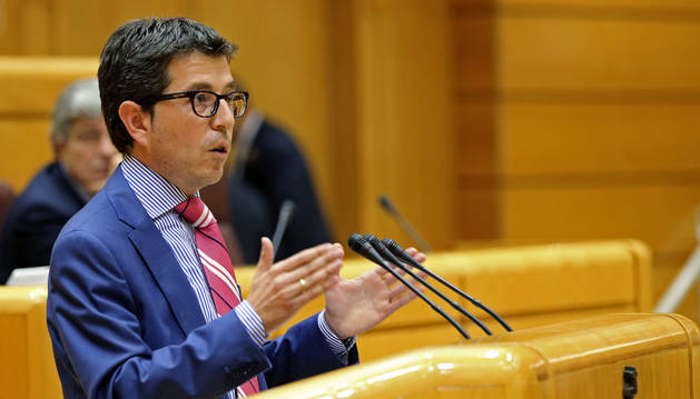 El senador Francisco Javier Yanguas (UPN), durante su intervención en el primer pleno del Senado de la XII legislatura.