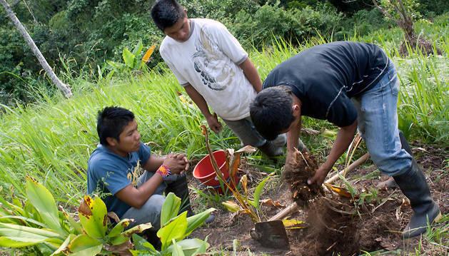Imagen de 'Los Emberá Chamí, cultivando esperanza', exposición fotografíca sobre un proyecto de cooperación realizado en Colombia por la ONG Compartir Navarra.