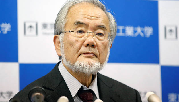 Yoshinori Ohsumi, profesor del Instituto de Tecnología de Tokio, en la rueda de prensa que ha ofrecido tras saberse que le ha sido concedido el premio Nobel de Medicina.