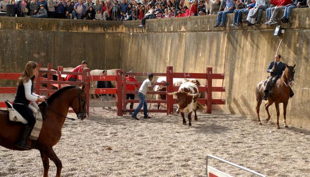 El día del caballo, que se celebra el día 12, es el más multitudinario.