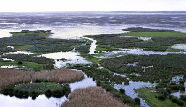 Parque Nacional de Doñana, en Huelva.