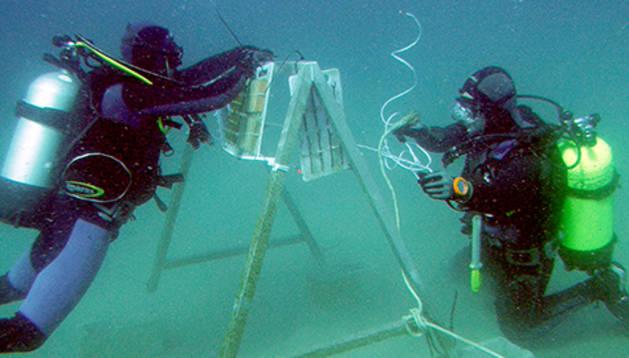 Dos investigadores trabajan en el pecio.