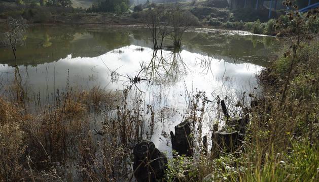 Marisma de Rubín, en San Vicente de la Barquera