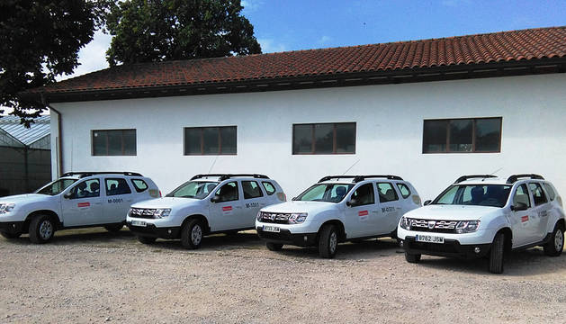 Imagen de los cuatro vehículos.
