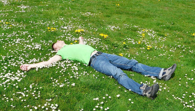 foto de un chico durmiendo en la hierba entre margaritas