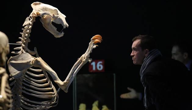 Exposición 'Human Bodies', en Baluarte