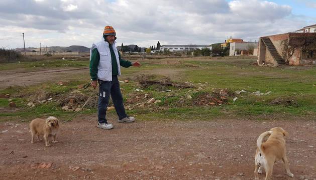 Imagen de un hombre pasea sus dos perros en el término de La Tejería, cerca de donde se creará el área canina.