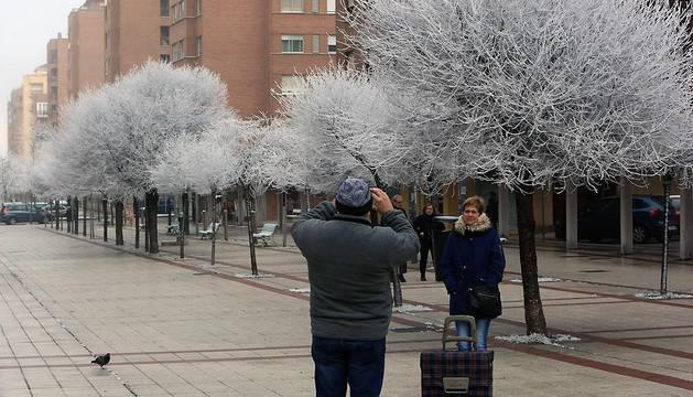 El fenómeno conocido como 'cencellada' ha ofrecido imágenes como ésta este viernes en el barrio pamplonés de Mendebaldea.