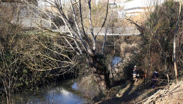 Dos trabajadores desbrozan los taludes del río Elorz a su paso por la pasarela de Echavacoiz.