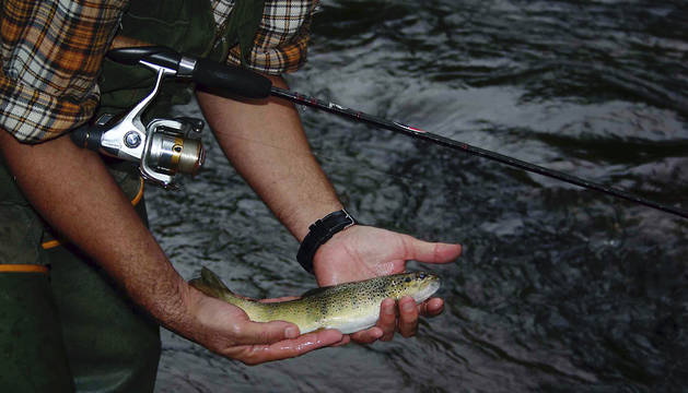 Pesca en el río Irati.