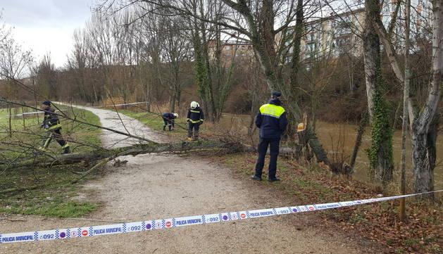 Agentes de policía municipal y varios bomberos trabajan en la zona afectada.