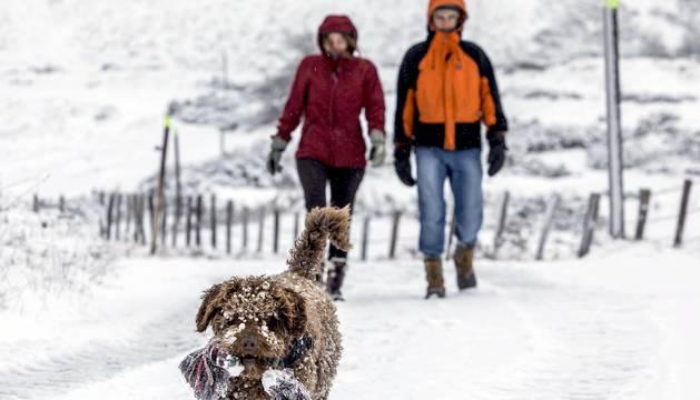El primer temporal de nieve del invierno ha llegado este viernes al norte de la Comunidad foral. La Agencia Estatal de Meteorología mantiene la predicción de que durante esta tarde-noche y este sábado se registren precipitaciones generalizadas en forma de nieve a partir de los 400 metros.