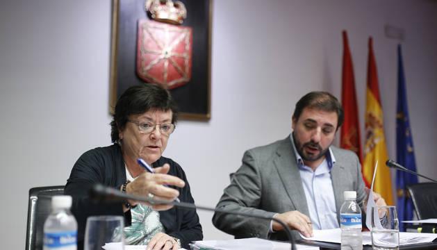 El Consejo de Navarra duda sobre la constitucionalidad de la oficina anticorrupción