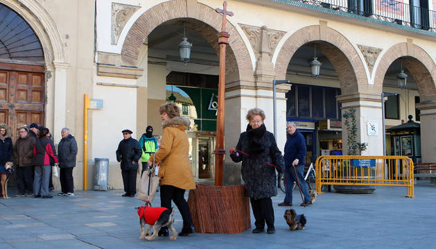 Dos perros cumplen con la tradición de dar vueltas a la cruz.