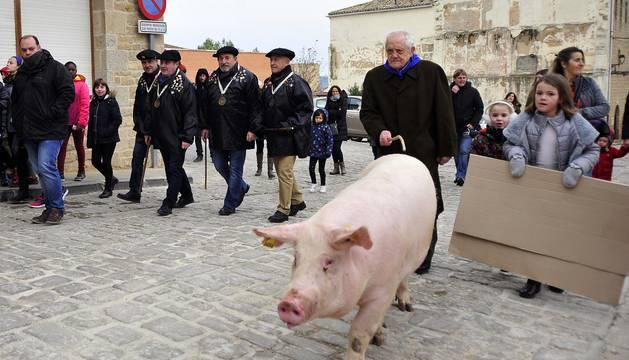 Rifa del cuto en honor a San Antón en Artajona