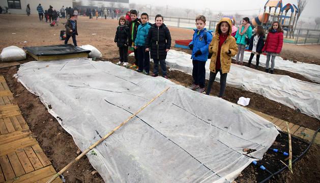 Varios niños posan en el huerto escolar del colegio Huertas Mayores de Tudela.