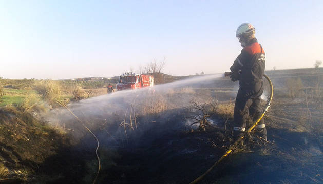 Los bomberos extinguen un incendio forestal en Andosilla