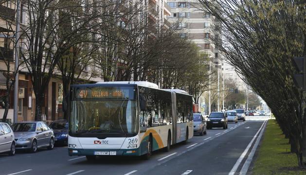 A la derecha los ejemplares de carpes que podrían verse afectados si los autobuses pasan a circular junto a la mediana de Pío XII.