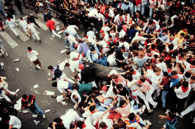 Montón del 11 de julio de 1993.