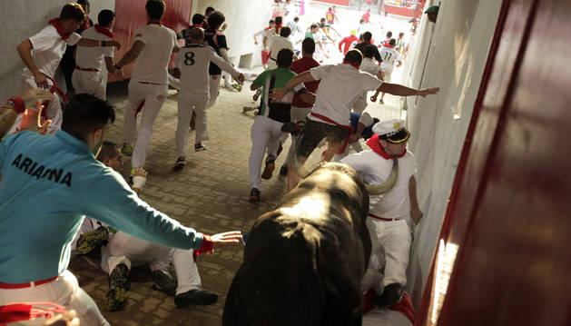 El toro Decana, de 585 kilos de peso, a punto está de cornear al corredor en la entrada de la plaza de toros.