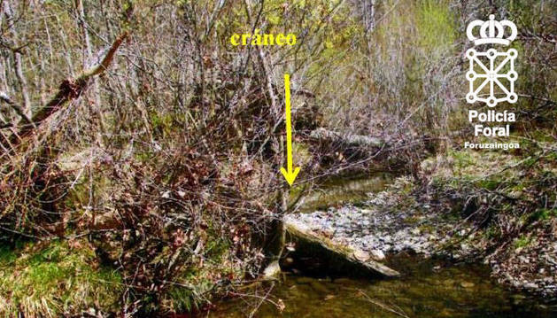 Lugar del río Irati, a unos dos kilómetros de Orbaizeta, donde apareció el cráneo.