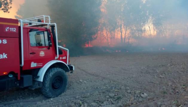 Detenido un tren en Tafalla por varios incendios entre Castejón y Marcilla