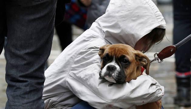 Imagen de un joven que acaricia a su mascota durante una concentración en la Plaza del Ayuntamiento de Pamplona.