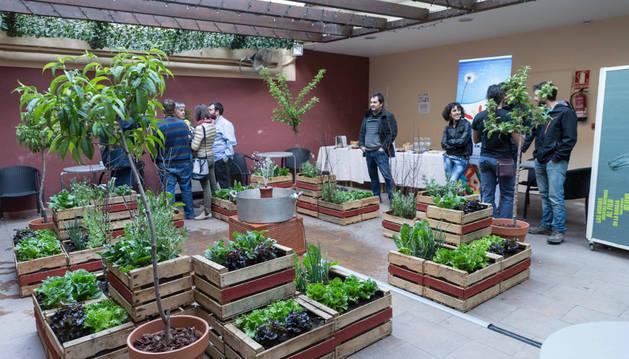 Imagen de asistentes a la inauguración del huerto ornamental que se puede ver en el patio del Remigio durante las Jornadas de la Verdura.