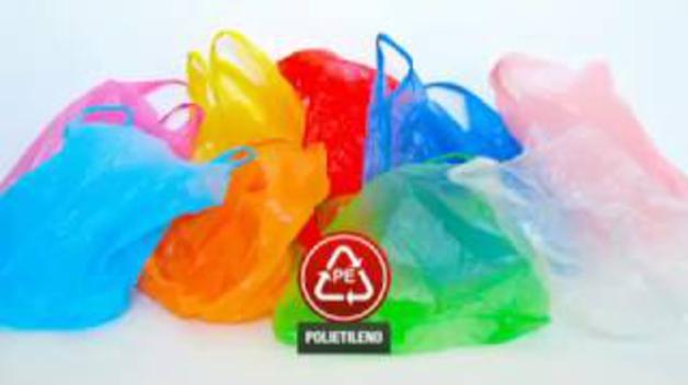 Los gusanos que comen plástico