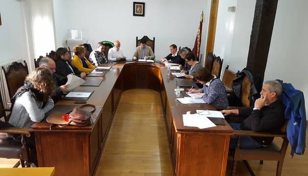 Imagen del pleno de ayer por la tarde en el Ayuntamiento de Alsasua.