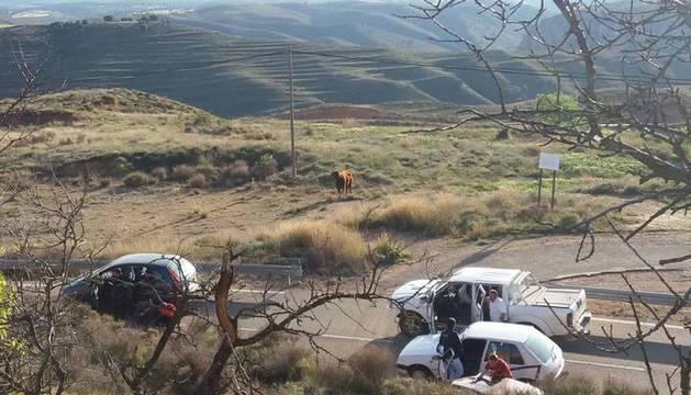 El toro capón escapado en el centro de la imagen.