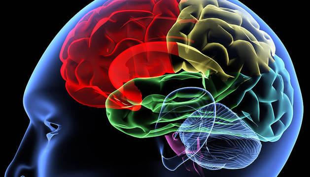 Las personas procesan diariamente una gran cantidad de información emocional.