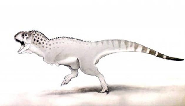 'Chenanisaurus barbaricus' es el contemporáneo africano más pequeño del norteamericano Tyrannosaurus Rex.