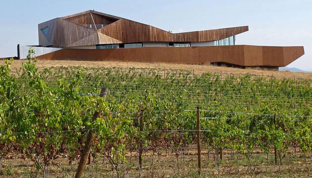 foto de Edificio y viñedos de Bodegas Aroa, situados en la localidad de Zurucuáin.