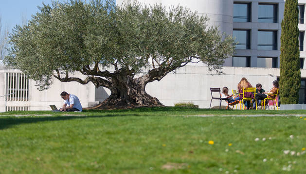 Foto del campus de la Universidad de Navarra.