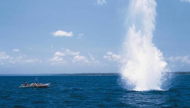 Pesca con explosivos o cómo dinamitar el futuro para vivir al día