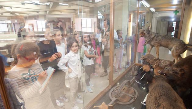 En el interior del Museo de Ciencias Naturales de la UN