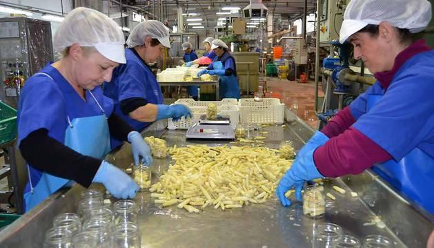 Trabajadoras embotando yemas en una de las línea de la fábrica de Conservas Pedro Luis de Lodosa.